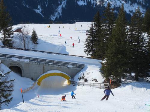 Skitagesfahrt Grindelwald 07.03.15
